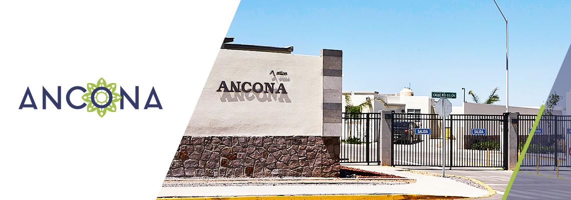 atlas-ancona-1