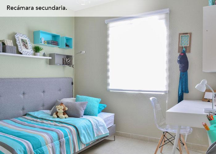 big_milano_ancona_chihuahua9